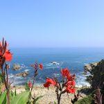 犬吠埼灯台、屏風ヶ浦の地層